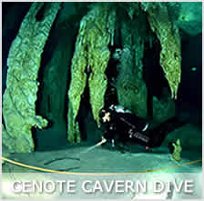 cenote cavern diving from playa del carmen